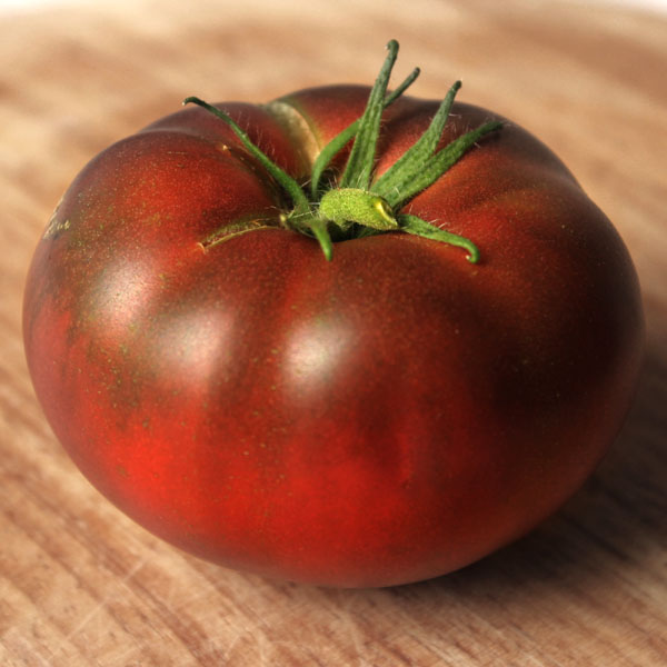 Tomato 'Rosella Purple' Super Dwarfs
