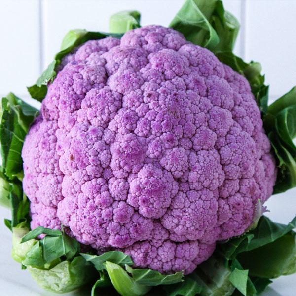 Cauliflower 'De Purple'