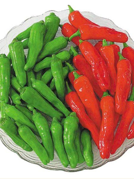 Pepper (Sweet) 'Mellow Star' Shishito type non-bell