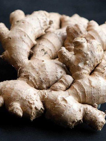 Ginger 'Big Kahuna'