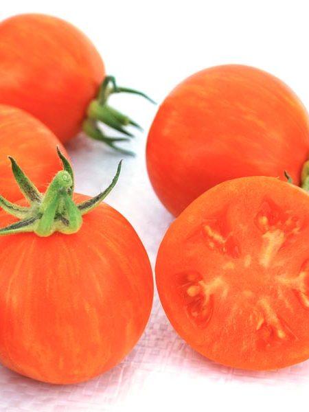 Tomato 'Apricot Zebra' Cream of the Crop Cherry Tomato