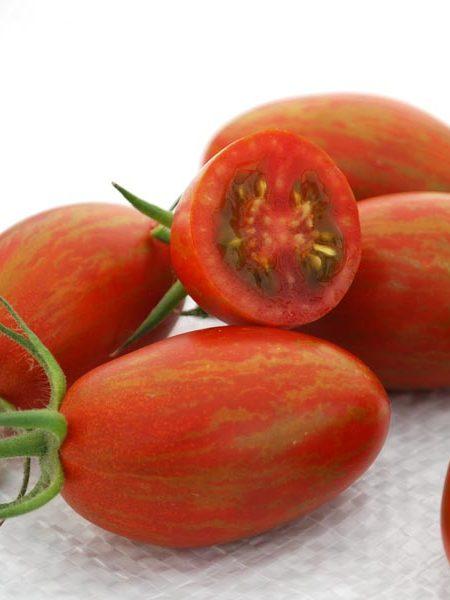 Tomato 'Bronze Torch' F1 Cream of the Crop Julienne Cherry Tomato
