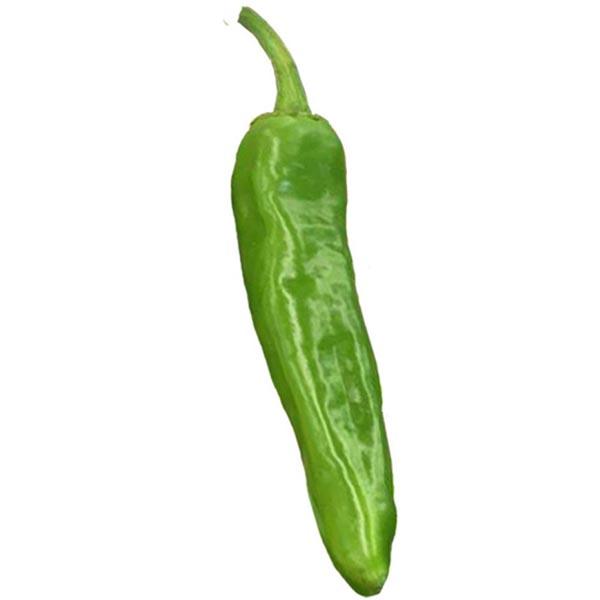 Heirloom Pepper (Hot) 'Hatch Lumbre'