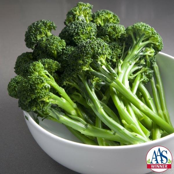 Broccoli 'Artwork' F1