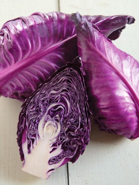 Cabbage 'Candy Red'