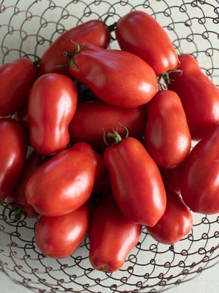 Heirloom Tomato 'San Marzano II'