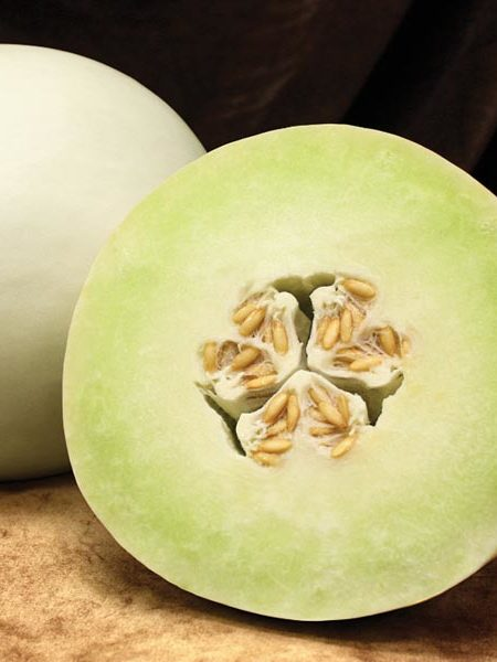 Melon 'Dulce Nectar' honeydew
