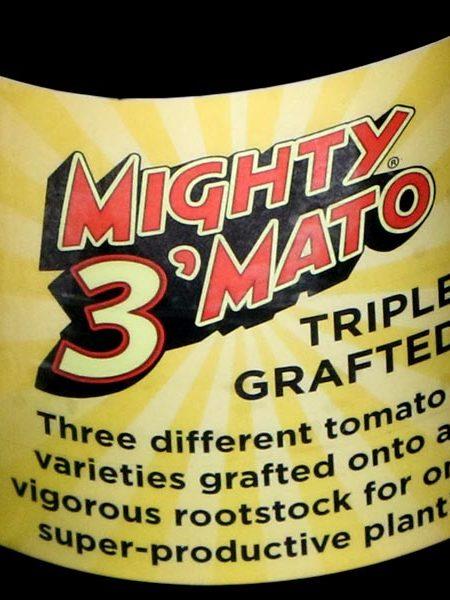 Mighty 3'Mato