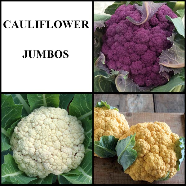 Cauliflower Jumbos