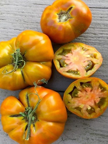 Heirloom Tomato 'Thorburn's Terra Cotta'