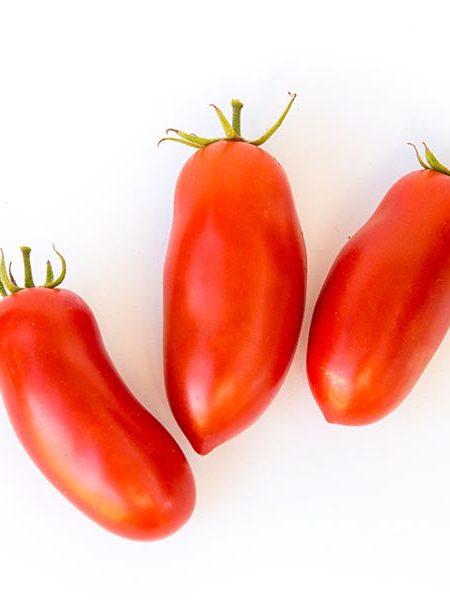 Tomato 'Pomodoro Squisito'