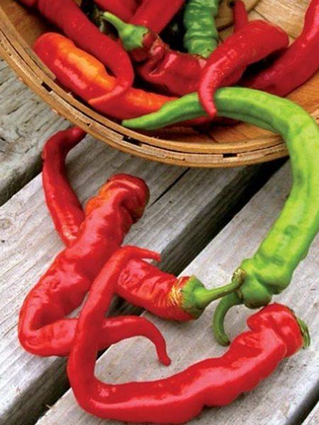 Heirloom Pepper (Sweet) 'Jimmy Nardello's'